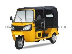 Triciclo pasajero/Keke/Motocicleta de tres ruedas de 4 a 6 persona (DTR-11B)