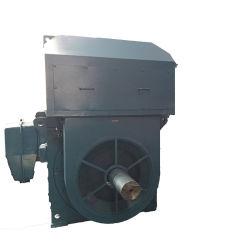 Typ Premium séries à fréquence variable magnétique permanent de l'efficacité AC Moteur électrique