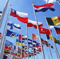 Custom американский Английский Немецкий Французский Испанский Португальский бразильский аргентинской мира национальным флагом стороны развевается флаг висящих String флагом регистрации декоративные флаг