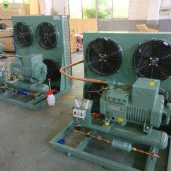 Unité de condensation en deux étapes Bitzer goutte dans l'unité Coolroom chambre froide de l'unité de compresseur