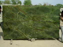 Самый большой тропический лес на заводе слоя из зеленого мрамора с низкой цене