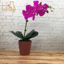 De rode Verglaasde Ceramische Pot van de Bloem met DwarsPatroon