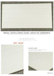 أفضل الأسعار المزجج جدار مبنى بلاطة المواد في الصين (36302)