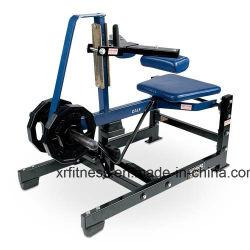 Gymnastik-Eignung-Gerät setzte Kalb-Erhöhung-/Sport-Waren