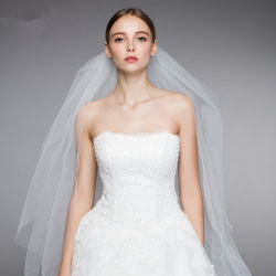 De duidelijke Sluier van het Huwelijk van de Toebehoren van het Huwelijk Bruids