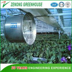 Estufas agrícolas do Ventilador de Circulação do Ventilador de Refrigeração