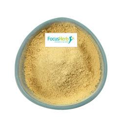 Focusherb Pó de frutos do mar Fd Buckthorn orgânico em pó
