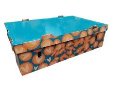 Impression couleur de l'emballage des fruits Légumes Boîte en carton ondulé