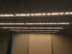 Professionele 640W leiden van de Reflector van de MAÏSKOLF Hydroponic Groene kweken Lichten