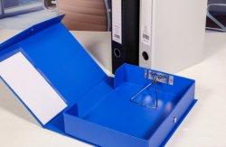 A4 Caja de PVC / Archivo Archivo de la caja con mejor calidad y mejor precio