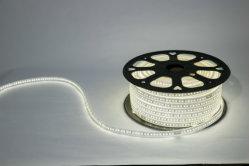Neonflex 12V DIY LED 네온사인을%s 분홍색 주황색 담청색 RGB 실리콘 LED 네온 코드 관 빛