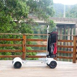 Eco-Rider 60V 20,8ah 1000W Edelstahl Handlebar Golf Elektro Skateboard Für Golfplatz