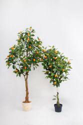 블러드 오렌지 나무 실내 화분용 화초 인공적인 과일 나무