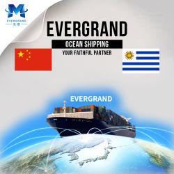 De professionele Overzeese Verschepende Dienst van de Vracht van China aan Uruguay/Montevideo