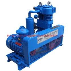 Compresor de pistón de gas licuado de petróleo para el depósito de camiones de gas
