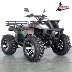 성인을%s 2020 새로운 72V 4WD 전기 ATV 2000W 4X4