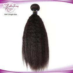 La nature vierge brésilien de l'homme noir Kinky Cheveux raides