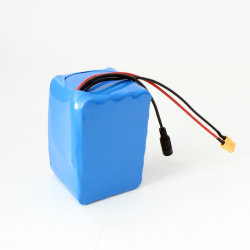 12V 20Ah 18650 Li Ion avec chargeur de batterie solaire