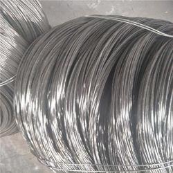 Filo di acciaio nero ad alto tenore di carbonio della bicicletta dello Spoke del tondo di prezzi bassi
