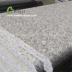 Superfície da China barato e um lado longo Flamed Bullnose bitolas de passos de granito cinza & Os Alimentadores