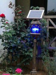 Luz de Trap Mosquito solar com molho de luz especiais