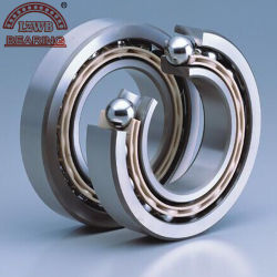 Maschinerie Parts von Angular Contact Ball Bearing (7302C/dB)