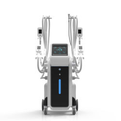 Потеря веса, утвержденном CE безопасность Professional Похудение Cryolipolysis контура тела машины