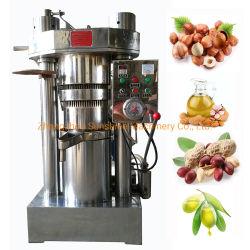 De kleine Kokende Dringende Machine van de Pers van de Extractie van de Olie van de Kokosnoot van de Olijf