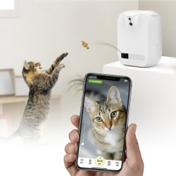 Hauptrechner Fernsteuerungs-APP-Spiel-interaktive Haustier-Katze-Selbst-He Spielzeug-Zufuhr interaktiv
