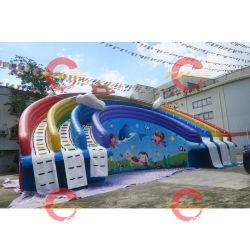 Heißer Verkaufs-spielt riesiges aufblasbares Wasser-Plättchen mit den Pools, die Kugel schwimmen, Pool-aufblasbaren Wasser-Park