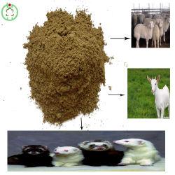 Feed Grade Fischmehl Livestocks Feed Manufacture Preis