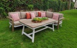 熱い販売人のチークが付いているがんがん鳴る椅子の屋外の家具は模造木製表の現代テラスの庭の裏庭の庭のホームセットを囲む