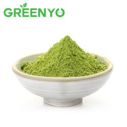 مسحوق الشاي الأخضر الطبيعي عالي الجودة مسحوق Matcha Organic Powder