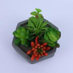 Ins style nordique Bonsai Plantes Succulentes plante décorative en pot PLANTES artificielles pour Mini Accueil Décoration intérieure des ornements