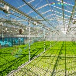 Commerce de gros d'usine de verre multi-span serre Restqurant Chambre pour l'éco tourisme Tourisme
