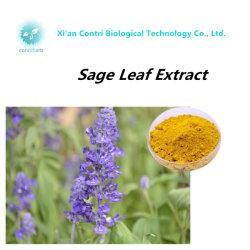 純粋で自然なCarnosic酸のSalviaの賢明な葉のエキス