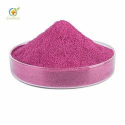 乾燥オーガニックブルーベリー粉末