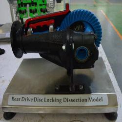 자동차 교육용 모델 리어 구동 디스크 잠금 해제 모델 교육 장비