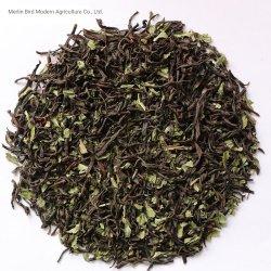 Hoja de menta el té negro orgánicos