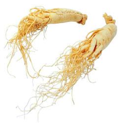 Estratto basso della radice del Ginseng dei residui di antiparassitario con gli effetti d'Aumento utilizzati in alimento funzionale