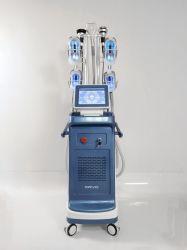 Le traitement de la Cellulite Maquina Cryolipolysis professionnel avec la cavitation à ultrasons Lipolaser RF