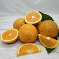Свежие первого качества пупка оранжевого цвета и Валенсии летом оранжевого цвета