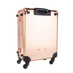 여행 장식용 조직자 직업 예술가 트롤리 로즈 금을 구르는 붙박이 빛 & 3개의 연한 색을%s 가진 메이크업 트레인 여행 가방