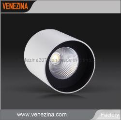 Lâmpada LED de espigas de alumínio puro Luminária de teto 15W 20W levou baixar as luzes de tecto LED Refletor LED de luz LED de luz LED de luz para baixo