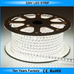 Striscia di tensione SMD 5050 100m/Roll 220V LED