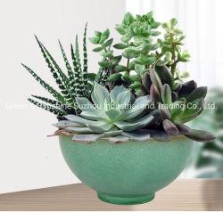 공장에서 직접 생분해성 내구성 WPC 플라워 포트 13인치 용기 판매 플라스틱 화분 식물 식물 식물 식물 식물 정원 식물 B
