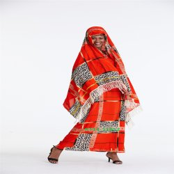 De in het groot Afrikaanse Stijlen van Ghana van de Kleding van de Kleding van de Vrouwen van de Batik