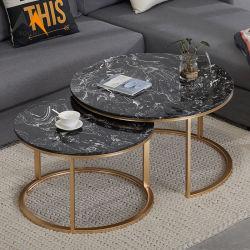 Het In het groot Moderne Nestelen van de fabriek om de Marmeren Koffietafel van het Metaal