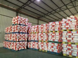 فيتال وحر جلوتن، صنع في الصين، المصنع الإمداد المباشر