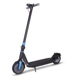 PRO Citycoco batterie électronique d'eau neige de gaz Gaz de pliage Motorvespa essence scooter